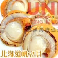 日本北海道熟帆立貝
