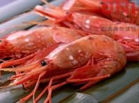 牡丹蝦刺身